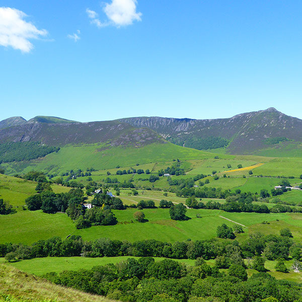 View of Coledale Challenge